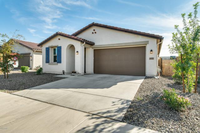 8533 W Lamar Road, Glendale, AZ 85305 (MLS #5849307) :: The Laughton Team