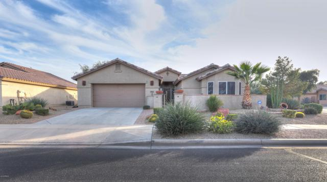 2369 E Firerock Drive, Casa Grande, AZ 85194 (MLS #5849327) :: Arizona 1 Real Estate Team