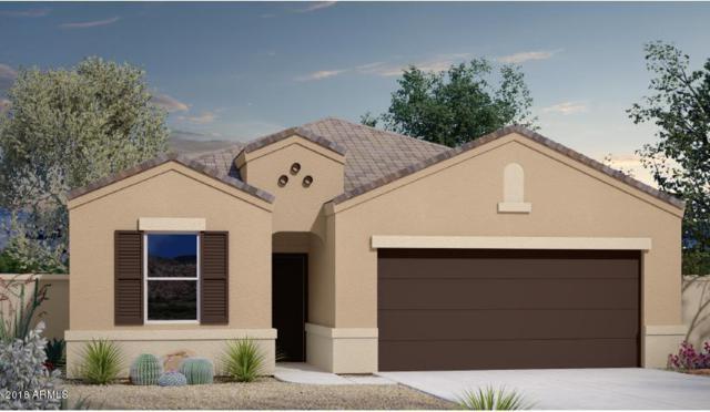 37013 W Maddaloni Avenue, Maricopa, AZ 85138 (MLS #5849335) :: Revelation Real Estate