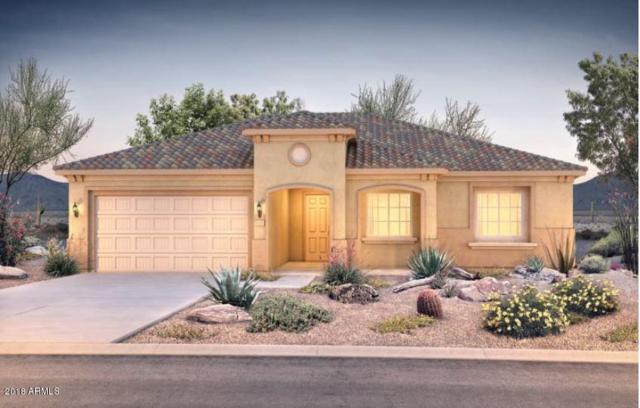 26588 W Abraham Lane, Buckeye, AZ 85396 (MLS #5849383) :: Desert Home Premier