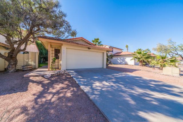 4701 E Piedmont Road, Phoenix, AZ 85044 (MLS #5849385) :: Conway Real Estate