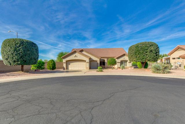 14313 W Gunsight Drive, Sun City West, AZ 85375 (MLS #5849399) :: Riddle Realty