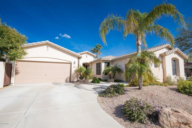 6110 W Hedgehog Place, Phoenix, AZ 85083 (MLS #5849415) :: Team Wilson Real Estate