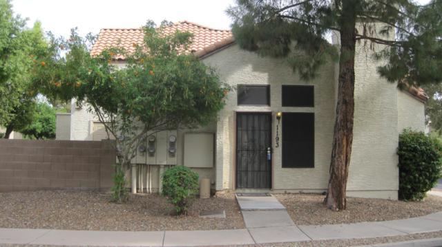 921 W University Drive #1193, Mesa, AZ 85201 (MLS #5849419) :: Conway Real Estate