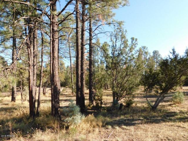 2103 Roundup Road, Overgaard, AZ 85933 (MLS #5849440) :: Conway Real Estate