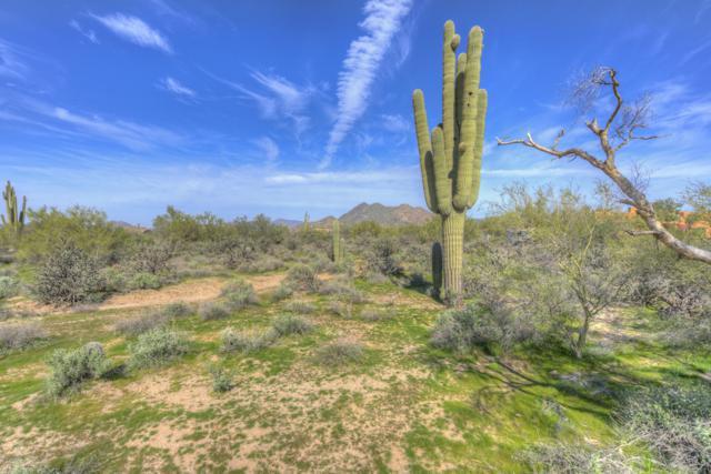 32455 N 64TH Street, Cave Creek, AZ 85331 (MLS #5849444) :: Conway Real Estate