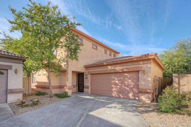 15804 N 36TH Lane, Phoenix, AZ 85053 (MLS #5849451) :: Conway Real Estate