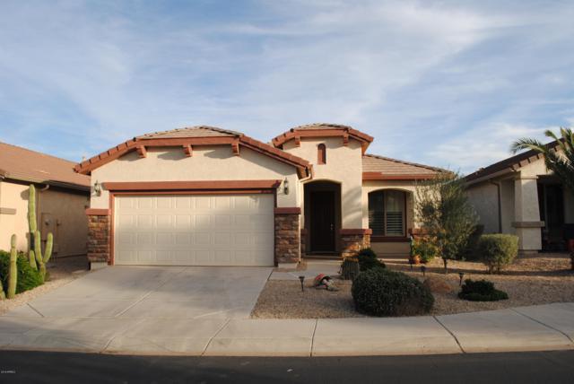 29957 N Gecko Trail, San Tan Valley, AZ 85143 (MLS #5849501) :: The W Group