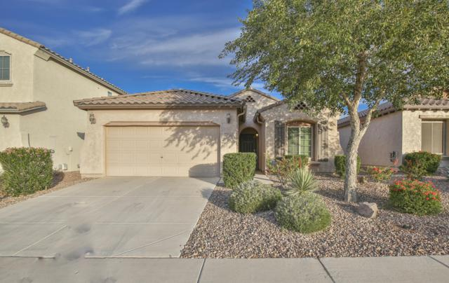 7514 W Sonoma Way, Florence, AZ 85132 (MLS #5849563) :: Team Wilson Real Estate