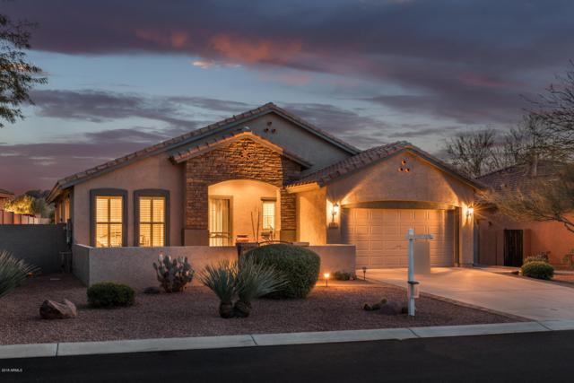 7581 E Elderberry Way, Gold Canyon, AZ 85118 (MLS #5849574) :: Revelation Real Estate