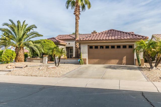 18663 N Sundrift Court, Surprise, AZ 85374 (MLS #5849587) :: CC & Co. Real Estate Team