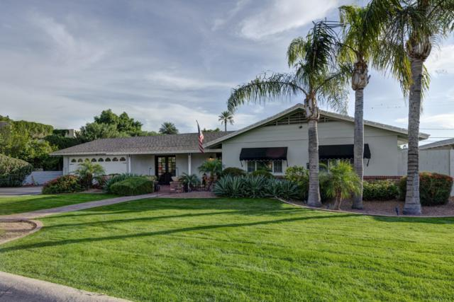 4221 E Patricia Jane Drive, Phoenix, AZ 85018 (MLS #5849597) :: Team Wilson Real Estate