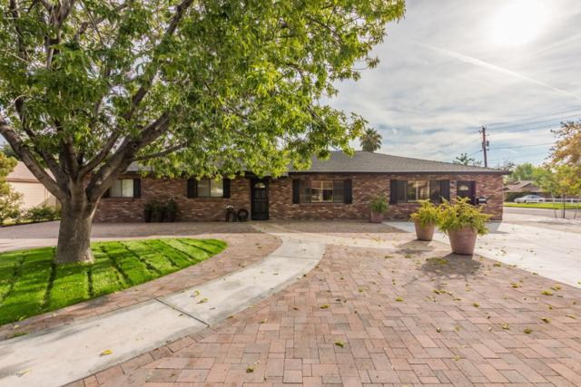 301 E Berridge Lane, Phoenix, AZ 85012 (MLS #5849602) :: RE/MAX Excalibur