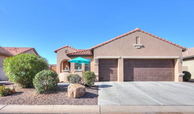 5278 N Gila Trail Drive, Eloy, AZ 85131 (MLS #5849603) :: Yost Realty Group at RE/MAX Casa Grande