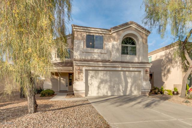 3818 W Dancer Lane, Queen Creek, AZ 85142 (MLS #5849620) :: Revelation Real Estate