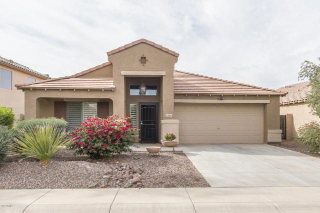 22366 N Vanderveen Way, Maricopa, AZ 85138 (MLS #5849681) :: Revelation Real Estate