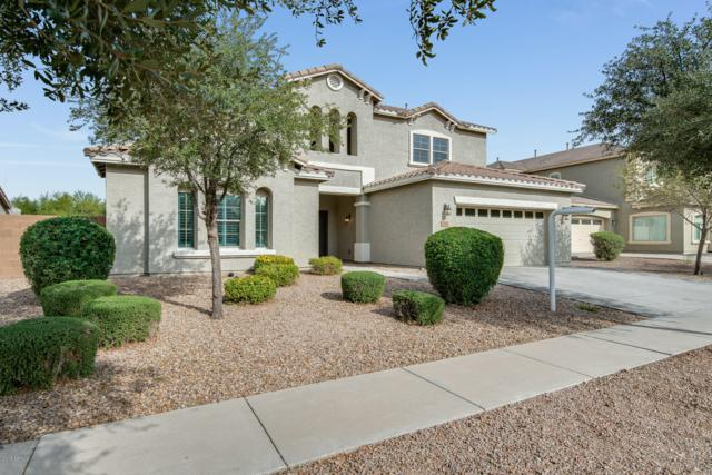 2994 E Vernon Street, Gilbert, AZ 85298 (MLS #5849708) :: The Garcia Group