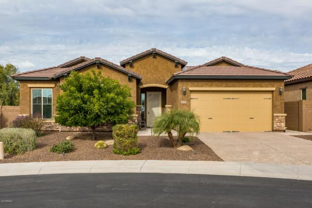 5630 E Desert Forest Trail, Cave Creek, AZ 85331 (MLS #5849717) :: The Laughton Team