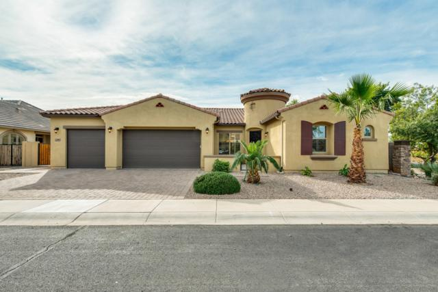 1503 E Gemini Place, Chandler, AZ 85249 (MLS #5849719) :: Revelation Real Estate