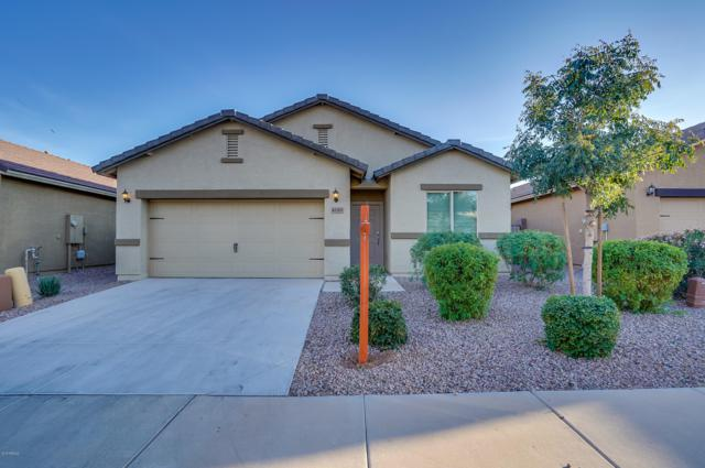 41205 W Lucera Lane, Maricopa, AZ 85138 (MLS #5849726) :: Revelation Real Estate