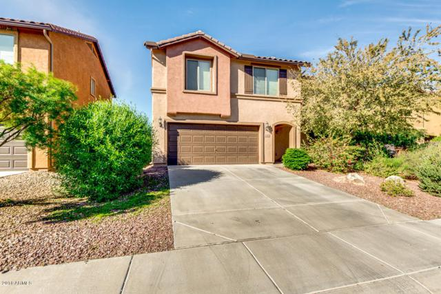 2670 N Palo Verde Drive, Florence, AZ 85132 (MLS #5849785) :: The Property Partners at eXp Realty