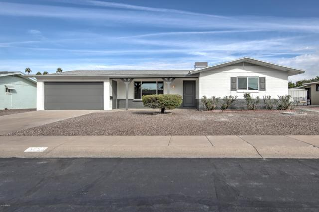 5856 E Dodge Street, Mesa, AZ 85205 (MLS #5849794) :: Yost Realty Group at RE/MAX Casa Grande