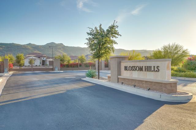 2913 E Harwell Road, Phoenix, AZ 85042 (MLS #5849800) :: Revelation Real Estate