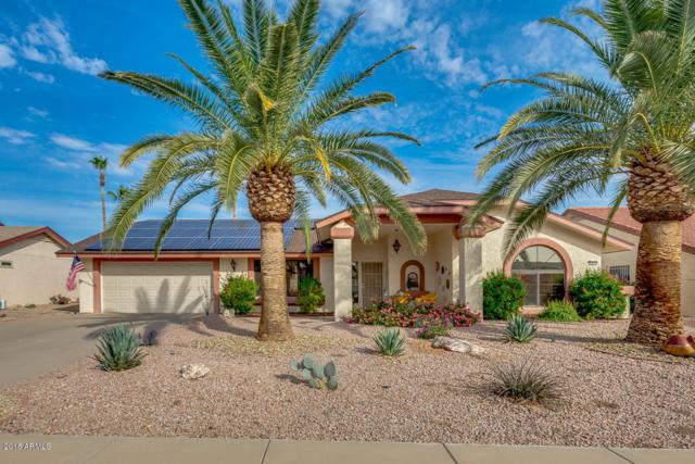 14610 W Antelope Drive, Sun City West, AZ 85375 (MLS #5849808) :: Yost Realty Group at RE/MAX Casa Grande