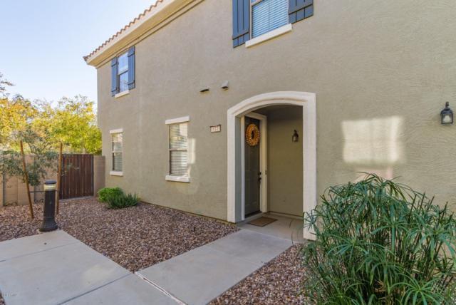 1330 S Aaron Drive #177, Mesa, AZ 85209 (MLS #5849838) :: Arizona Best Real Estate