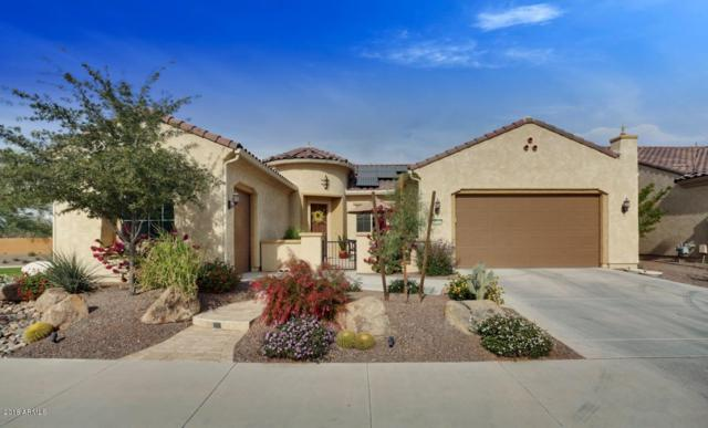 26444 W Tina Lane, Buckeye, AZ 85396 (MLS #5849856) :: The Results Group