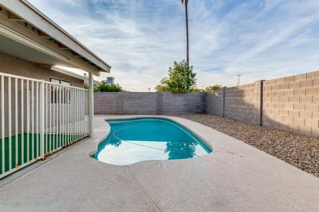 3236 E Windrose Drive, Phoenix, AZ 85032 (MLS #5849879) :: The W Group