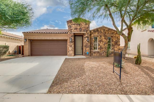 29461 W Columbus Avenue, Buckeye, AZ 85396 (MLS #5849895) :: Scott Gaertner Group