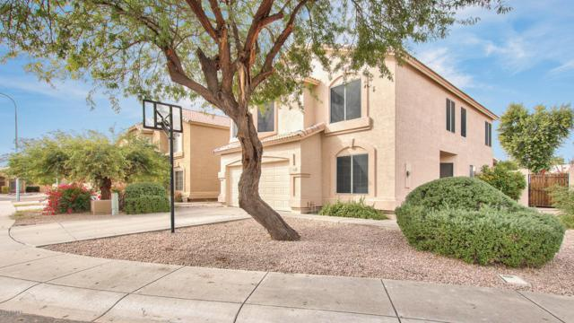 838 E Geronimo Court, Chandler, AZ 85225 (MLS #5849900) :: The Daniel Montez Real Estate Group