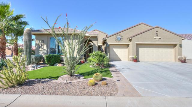 5392 N Grand Canyon Drive, Eloy, AZ 85131 (MLS #5849909) :: Yost Realty Group at RE/MAX Casa Grande