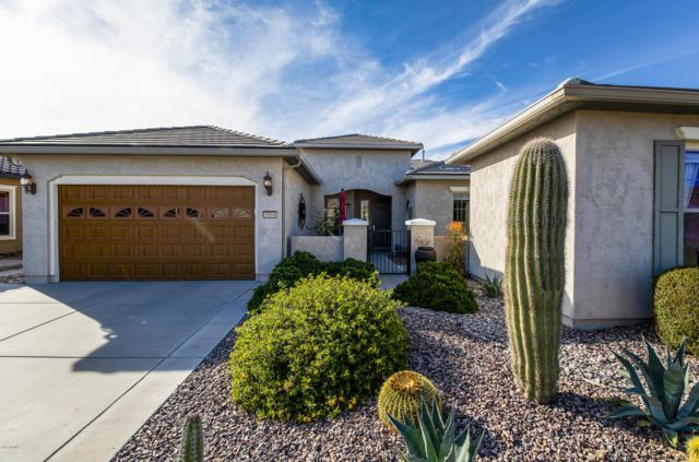 3504 N Petersburg Drive, Florence, AZ 85132 (MLS #5849942) :: Team Wilson Real Estate