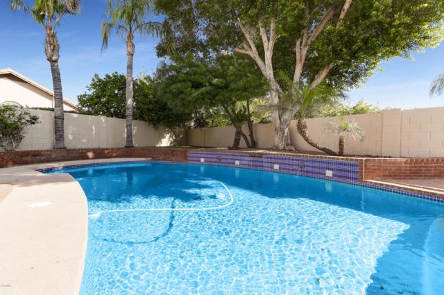 7736 W Topeka Drive, Glendale, AZ 85308 (MLS #5849975) :: REMAX Professionals