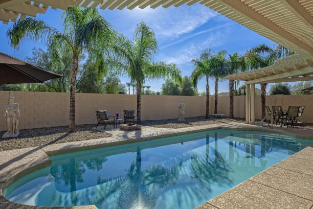 2029 N 164TH Avenue, Goodyear, AZ 85395 (MLS #5849984) :: CC & Co. Real Estate Team