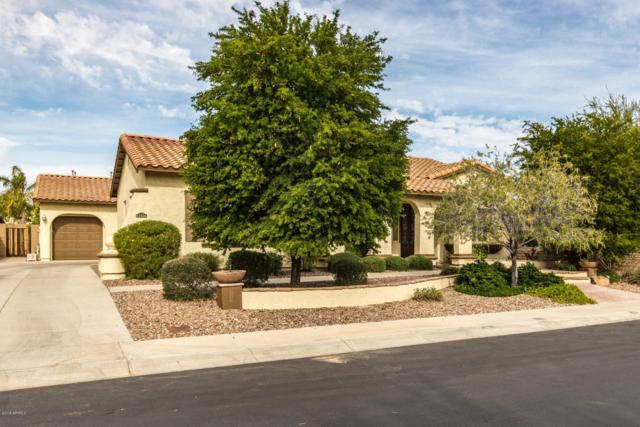12416 W Dove Wing Way, Peoria, AZ 85383 (MLS #5850020) :: Kortright Group - West USA Realty