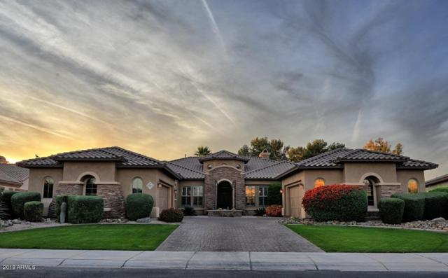 4862 N Barranco Drive, Litchfield Park, AZ 85340 (MLS #5850028) :: The Results Group