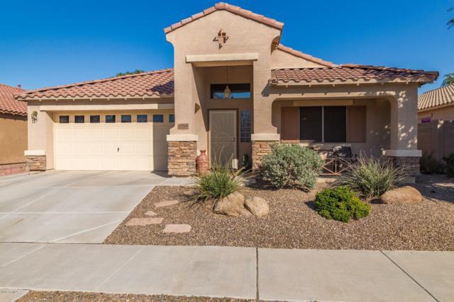 17664 W Larkspur Drive, Surprise, AZ 85388 (MLS #5850030) :: Scott Gaertner Group