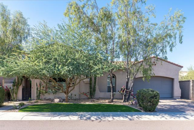 26162 N 85TH Lane, Peoria, AZ 85383 (MLS #5850034) :: The Results Group
