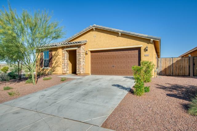 10460 W Alyssa Lane, Peoria, AZ 85383 (MLS #5850082) :: The W Group
