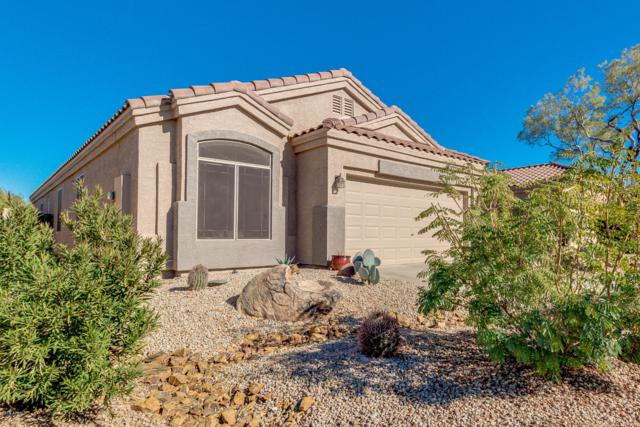 4216 E Desert Sky Court, Cave Creek, AZ 85331 (MLS #5850107) :: Yost Realty Group at RE/MAX Casa Grande