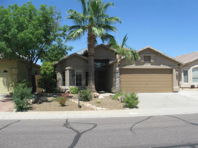 2510 E Knudsen Drive, Phoenix, AZ 85024 (MLS #5850119) :: Yost Realty Group at RE/MAX Casa Grande