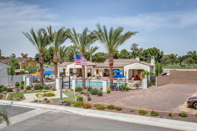 14200 W Village Parkway #2046, Litchfield Park, AZ 85340 (MLS #5850133) :: The Results Group