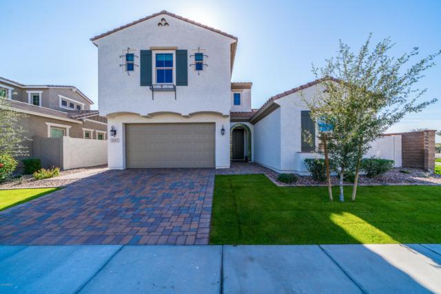 991 W Zion Way, Chandler, AZ 85248 (MLS #5850288) :: The Daniel Montez Real Estate Group