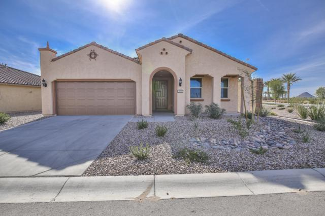 4518 N Petersburg Drive, Florence, AZ 85132 (MLS #5850305) :: Team Wilson Real Estate