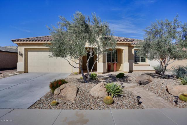 26192 W Tina Lane, Buckeye, AZ 85396 (MLS #5850308) :: Desert Home Premier