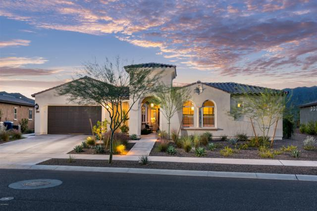 4742 N 210TH Avenue, Buckeye, AZ 85396 (MLS #5850370) :: The Property Partners at eXp Realty