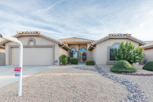 8529 W Rosemonte Drive, Peoria, AZ 85382 (MLS #5850452) :: RE/MAX Excalibur